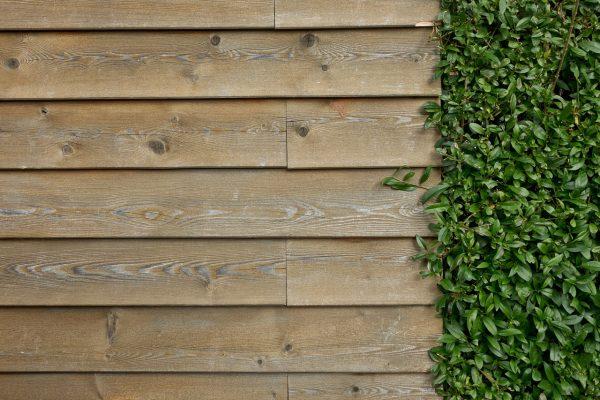 wall, wooden wall, wall boards
