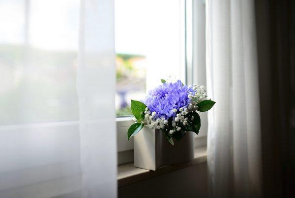 flower vase, window, curtains