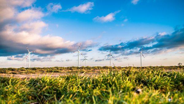 wind farm, energy, green