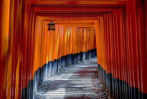 fushimi inari shrine, torii, temple